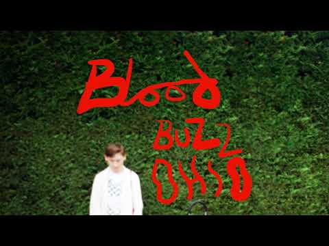 Soak – Bloodbuzz Ohio