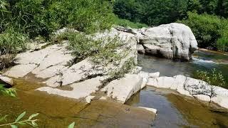 삼척시 하장면  어느골 갔더니  맑은물 흐르고  물고기 우글ᆢ