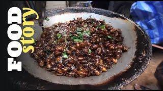 Des insectes dans nos assiettes