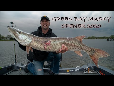 GREEN BAY MUSKY OPENER 2020 (What Not To Do)