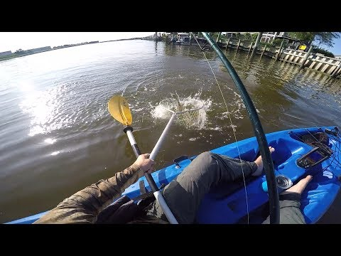 A Saltwater Kayak Fishing Adventure! First Keeper!