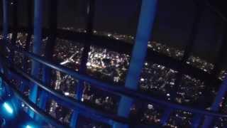 タイトルのまんまですが・・・東京スカイツリーからの夜景を、見た気に...