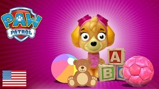 Baby Paw Patrol Vlog Meet Lylla the Sporty Puppy Surprise Skye and Chase baby