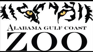 Repeat youtube video Alabama Gulf Coast Zoo Part 1