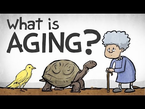 What Is Aging?