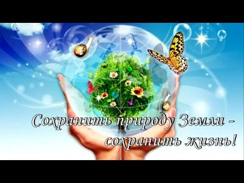 Экология \