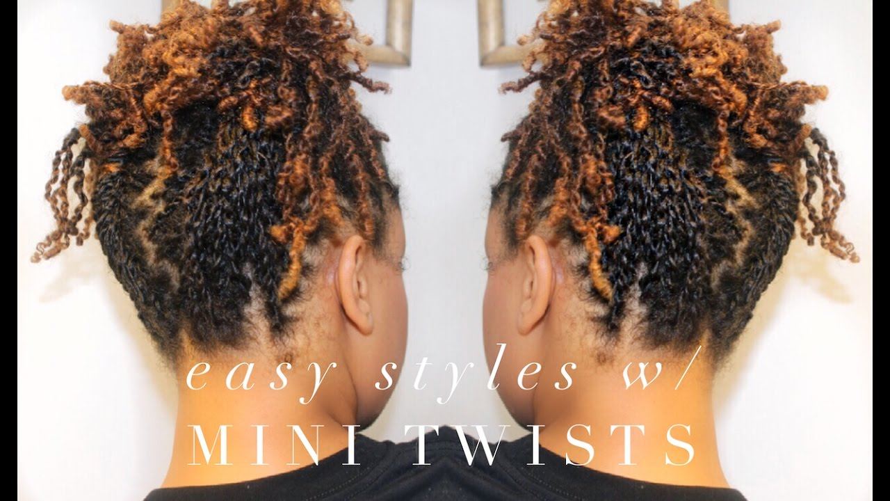 How To 5 Easy Styles W Mini Twists 4a Natural Hair Youtube