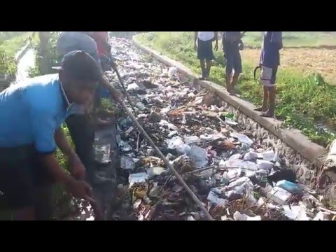 Plastic Pollution Indonesia