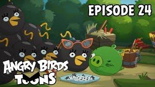 Angry Birds Toons | Bombina - S2 Ep24