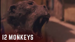 12 Monkeys Clip: