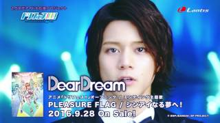DearDream - PLEASURE FLAG