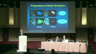 John Camm - 2nd Global Left Atrial Appendage Occlusion Summit 2012