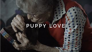 Puppy Love - Dog Kisses, Cuddles, and Licks in Slow Motion