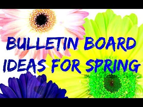 Bulletin Board Ideas For Spring Youtube