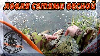 Рыбалка Сетями в Запрет во время Коронавируса. Вот такая Рыбалка Весной на Спиннинг. Голавль весной.
