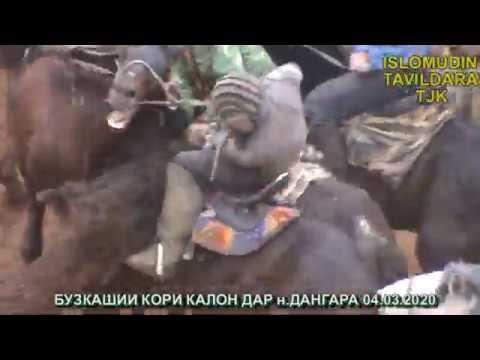 ДАНГАРА БУЗКАШИ 04.03.20 ПОЛЬНОЕ ВОРСИЯ
