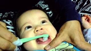 First Time Brushing Baby Teeth (baby giggles!)