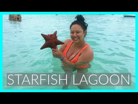 SAONA ISLAND STARFISH LAGOON | PUNTA CANA, DOMINICAN REPUBLIC | LifeWithGer Travel Vlog (#125)
