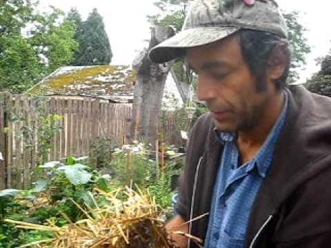 Low Tech Mushroom Cultivation with Mushroom Jordan