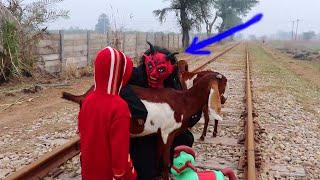 Shaitan ki new Makari    Shaitan vs Train with Horse Toy