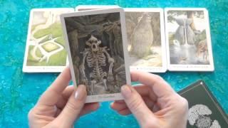 Deck Review: Wildwood Tarot (+Trim)