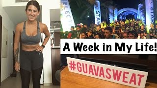 Download Video Electric Run, GuavaPass & a Home HIIT Workout | My 2017 Fitness Journey - Week 9 MP3 3GP MP4