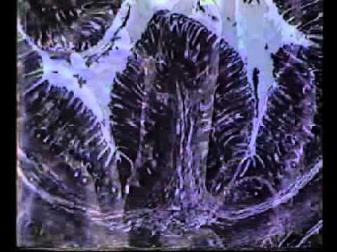Газообразование в кишечнике, причины и лечение