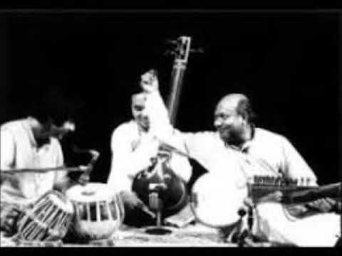 Jhinjhoti - Ali Akbar Khan and Zakir Hussain on Tabla