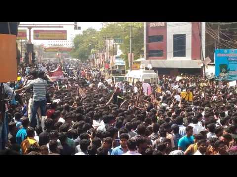 Today Madurai college students support to jallikattu