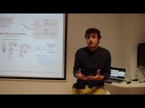 Introducción a la Psiconeuroinmunología Clínica (PNI) - Fisiofocus