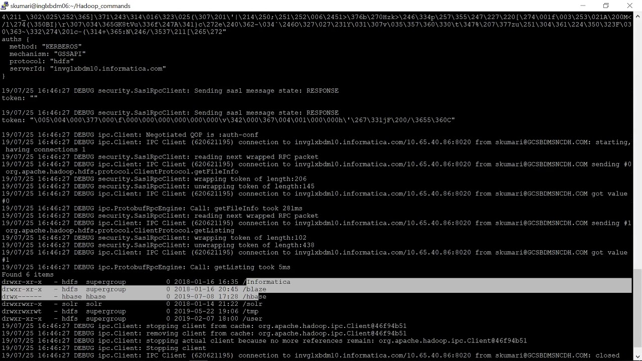 How to execute hadoop commands from DIS NODE