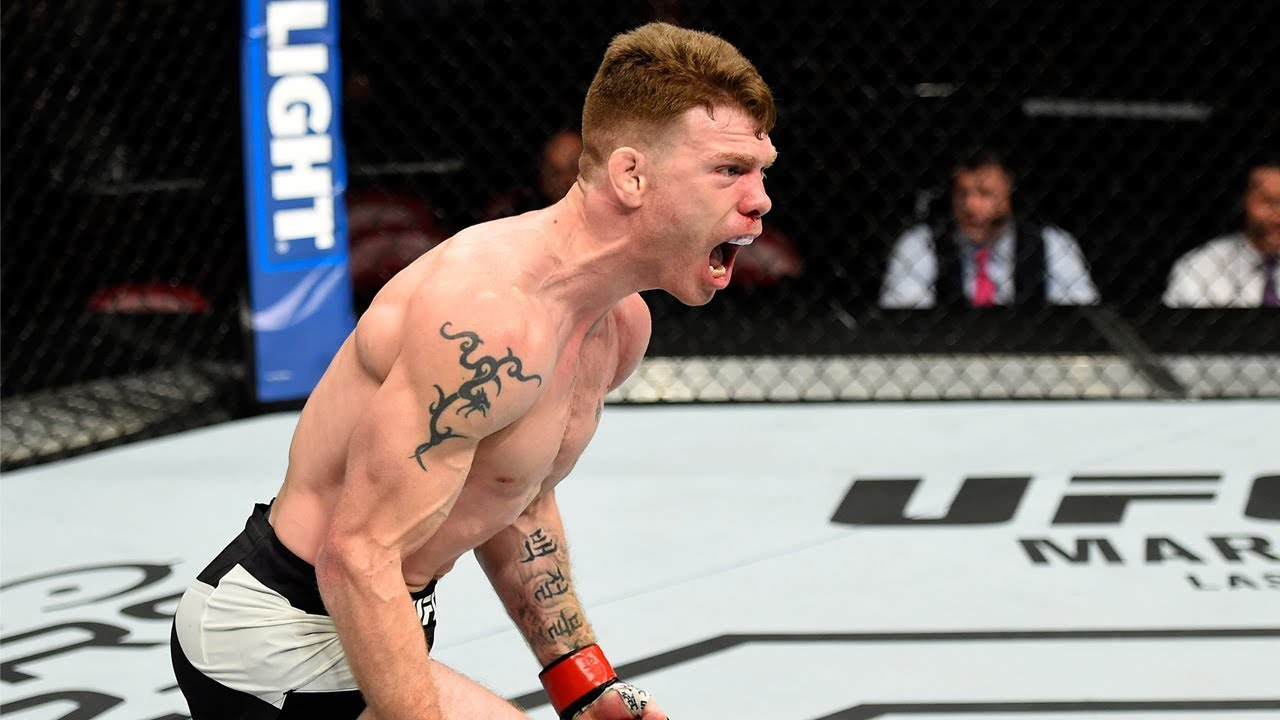 Top Finishes: Paul Felder