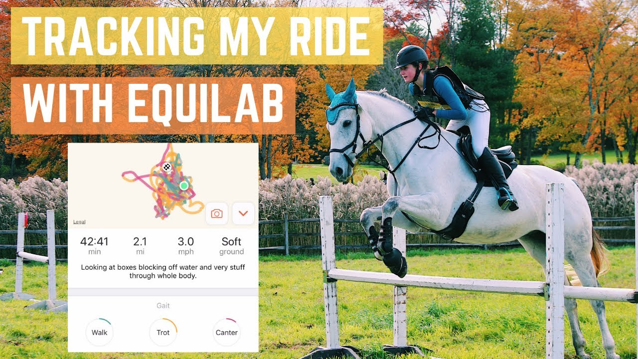 TRACKING MY RIDE?? // Barn Vlog with Equilab