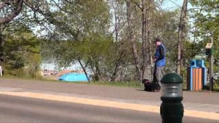 Ursa (rottweiler) Boot Camp Dog Training Video