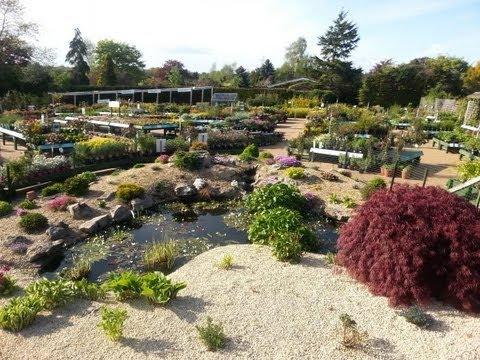 Mahon Garden Centre | One of Northern Ireland's leading garden centres