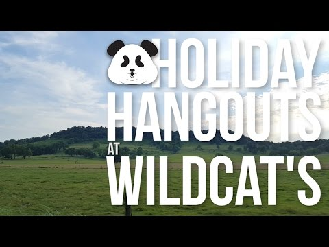 Fireworks, Four Wheelers and Fun Oh My! - Holiday Hangout at Wildcat's