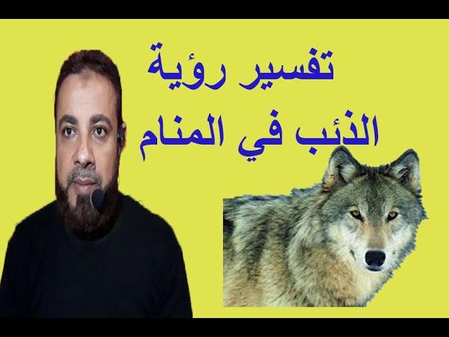 تفسير رؤية الذئب للعزباء والمتزوجة والحامل والرجل في المنام اسماعيل الجعبيري Youtube