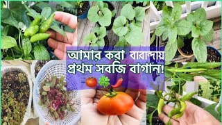 ржмрж╛рж░рж╛ржирзНржжрж╛ржпрж╝ ржЖржорж╛рж░ ржХрж░рж╛ ржкрзНрж░ржержо рж╕ржмржЬрж┐ ржмрж╛ржЧрж╛ржи|My First Balcony Vegetable Garden|Bangladeshi American Vlogger