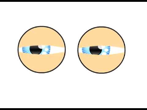 Test 4 animacion de ojos cartoon en flash youtube for Imagenes de animacion