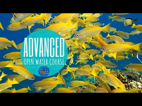 What To Expect From The PADI Advanced Open Water Course