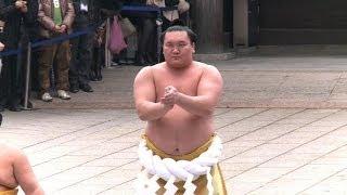 Baixar Sumo grand champs flex muscles in Tokyo