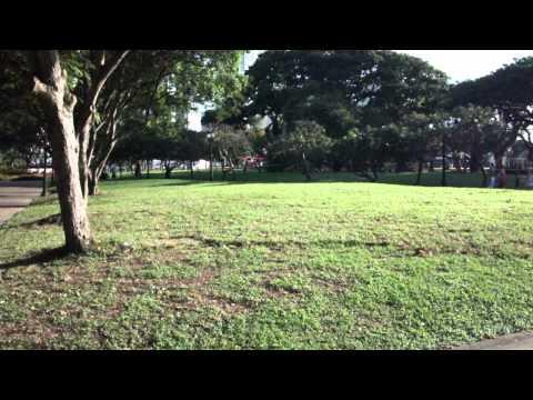 WLtoys V929 Beetle Ladybird Quad - Outdoor Flight #3 (Downtown Singapore)