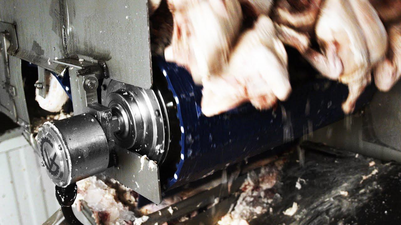 SSV Sanitary drum motor | Van der Graaf
