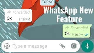 WhatsApp Forward Feature