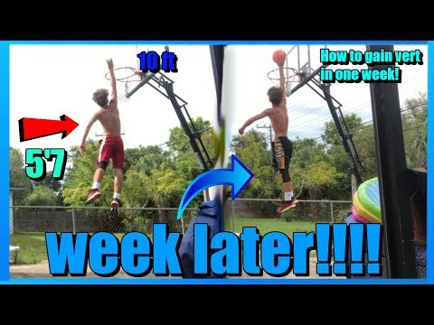 How to gain vertical in one week!!!!!! #jump #vertical #dunk #dunklife