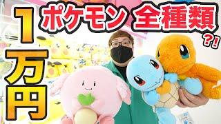 【奇跡起きた‼︎】クレーンゲームで1万円でポケモン全種類ゲットできるのか?!