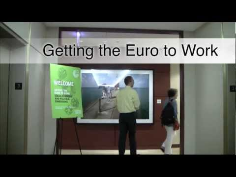 Getting the Euro to Work - social, economic and political dimensions