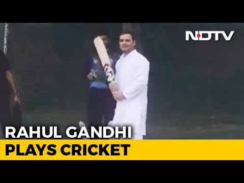 Watch: Rahul Gandhi Plays Cricket As Chopper Forced To Land In Haryana