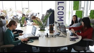 משרד מפנק ושף צמוד: כך מעסיקות חברות הייטק ישראליות עובדים בקייב