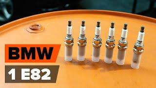 Инструкция за експлоатация на BMW F48 онлайн